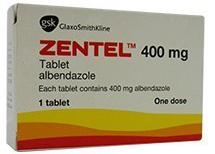 Zentel 400 Mg Bandy Albendazole Tablets Dosage